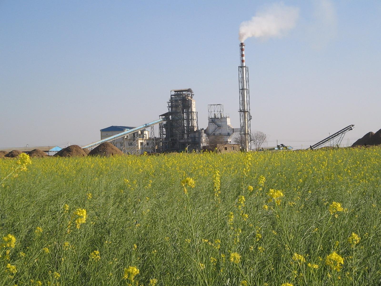 biomass power plant - photo #37