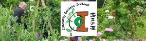 Community-Gardens-Ireland-Header-2016