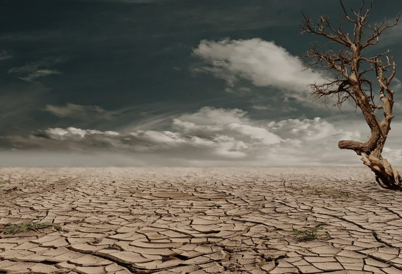 Desert Drought Photo: Pixabay