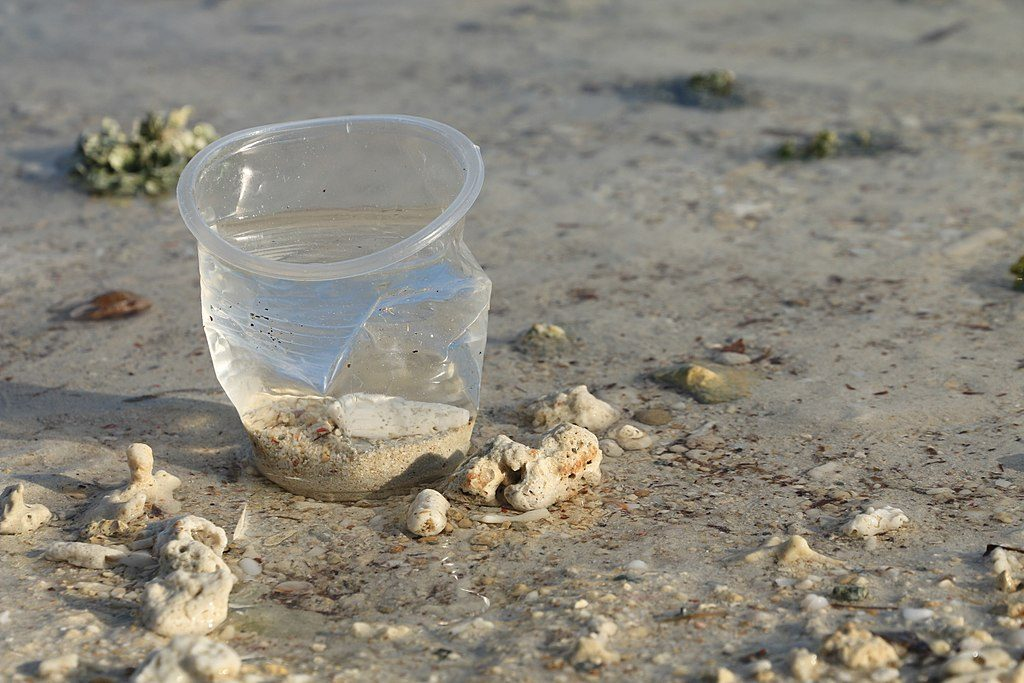 Single-use plastic cup on beach Photo: Øyvind Holmstad