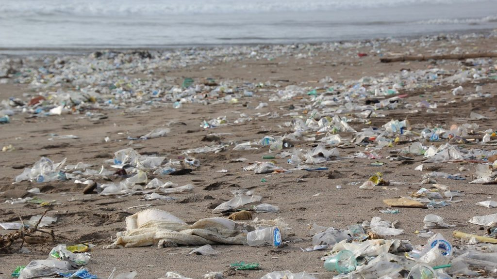ocean coast plastic waste pollution