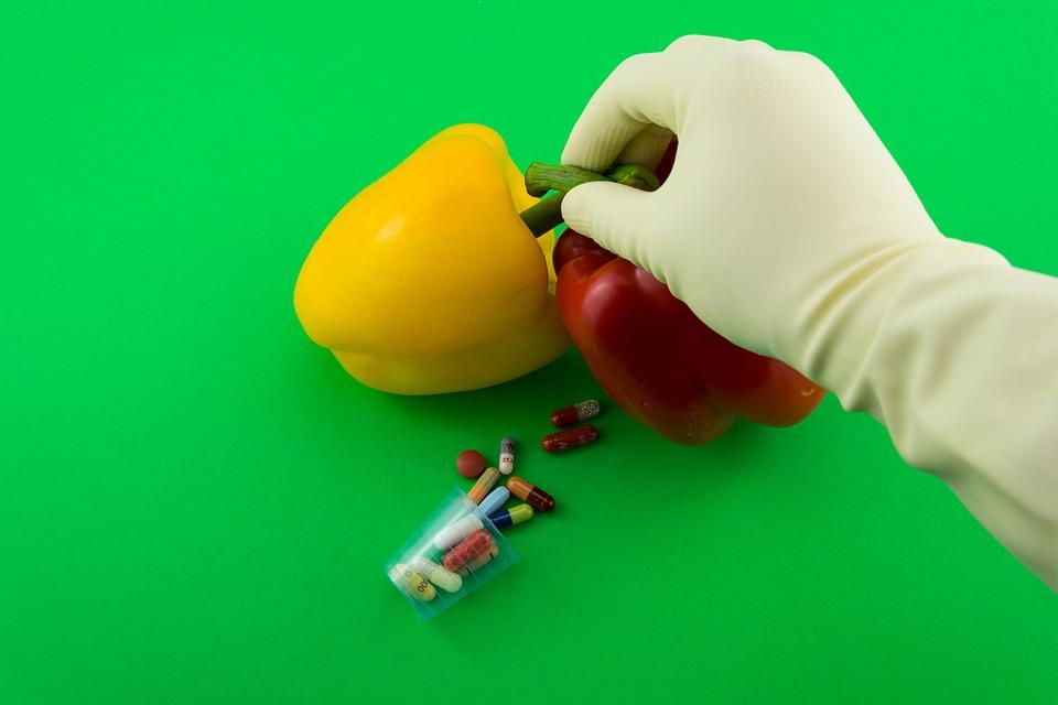GMO. Photo: Pixabay
