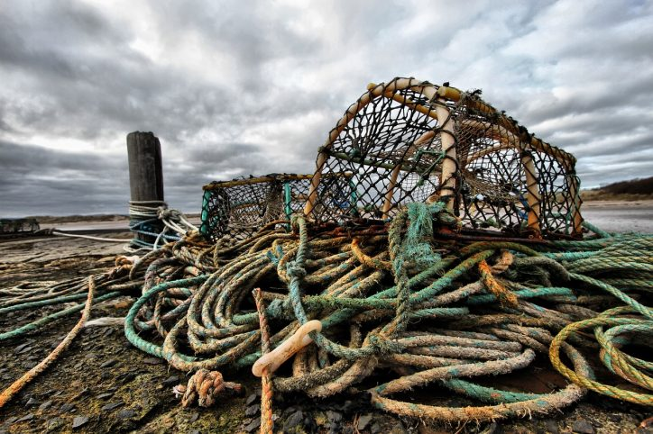 Lobster Pot Photo: Pixabay