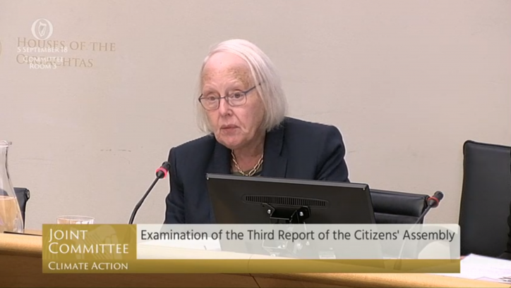 Ms Justice Laffoy Photo: Oireachtas TV