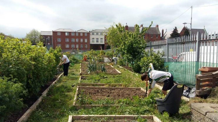 Photo:Weaver Square Community Garden