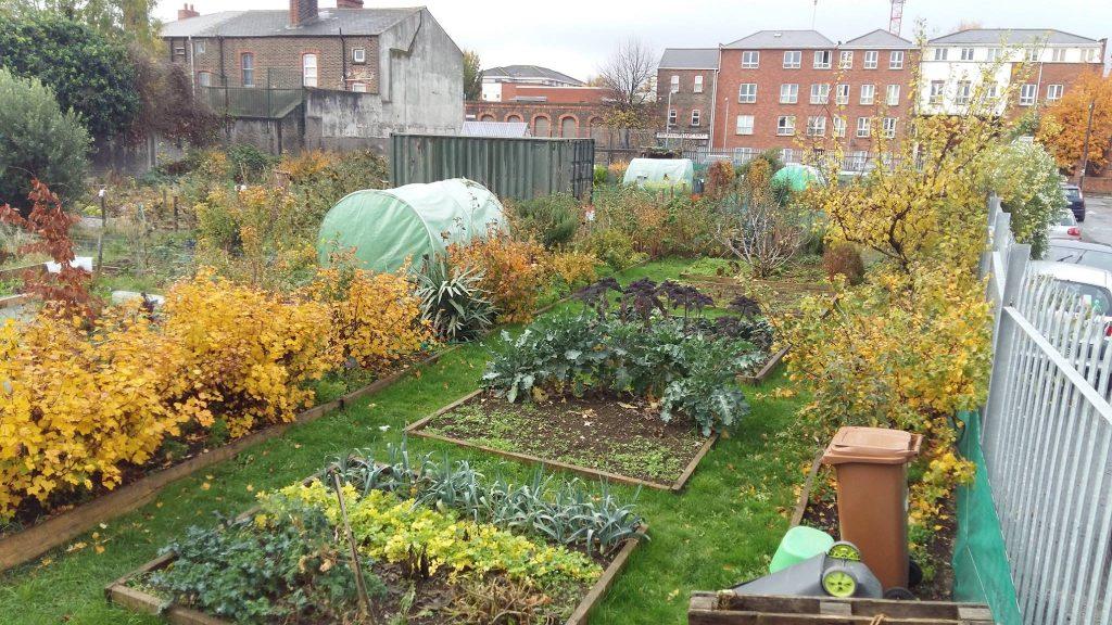 Photo: Weaver Square Community Garden