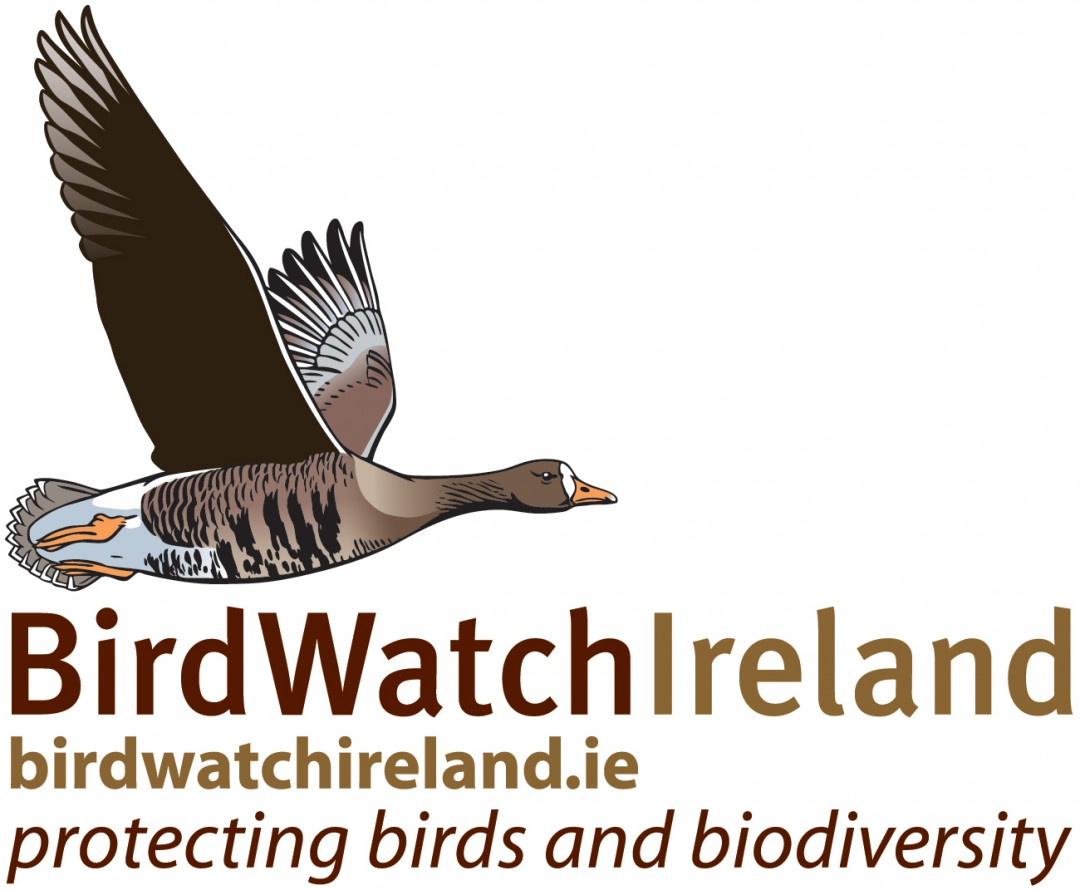 VACANCY: Two new exciting opportunities at BirdWatch ...