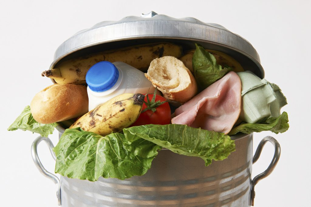 Fresh Food In Garbage Can To Illustrate Waste Photo: USDA