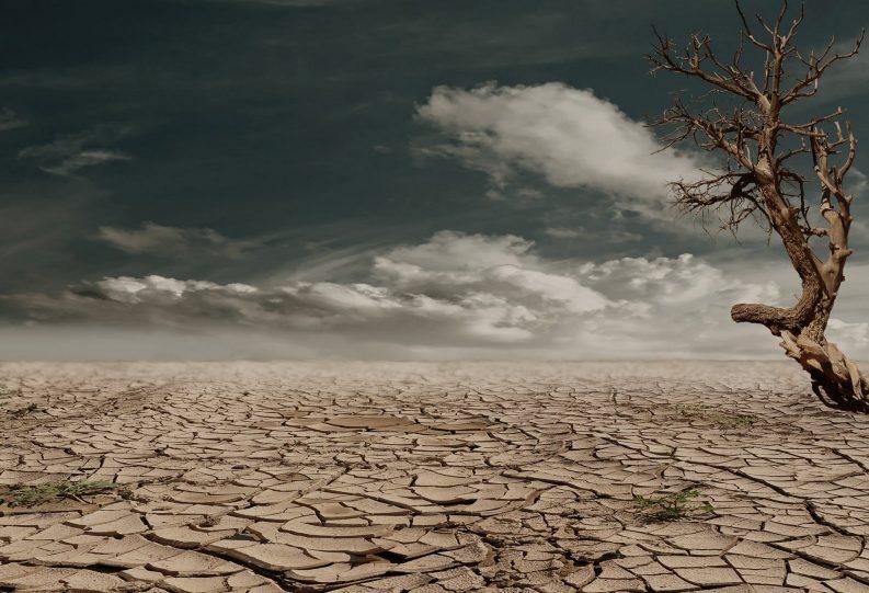 Desert Drought Photo: Pixabay