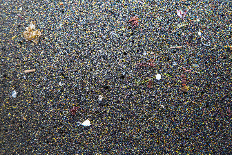 Microplastics in the Azores Photo: Raceforwater