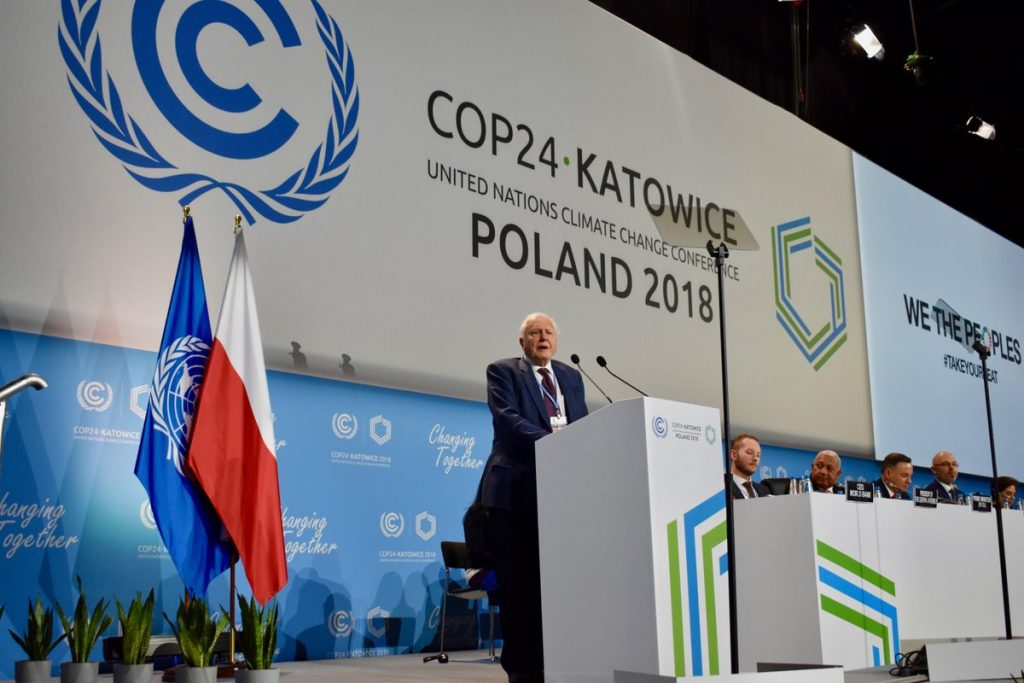 Sir David Attenborough COP24 Photo: UNFCCC