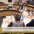 Committee on Climate Action hearing, March 2019