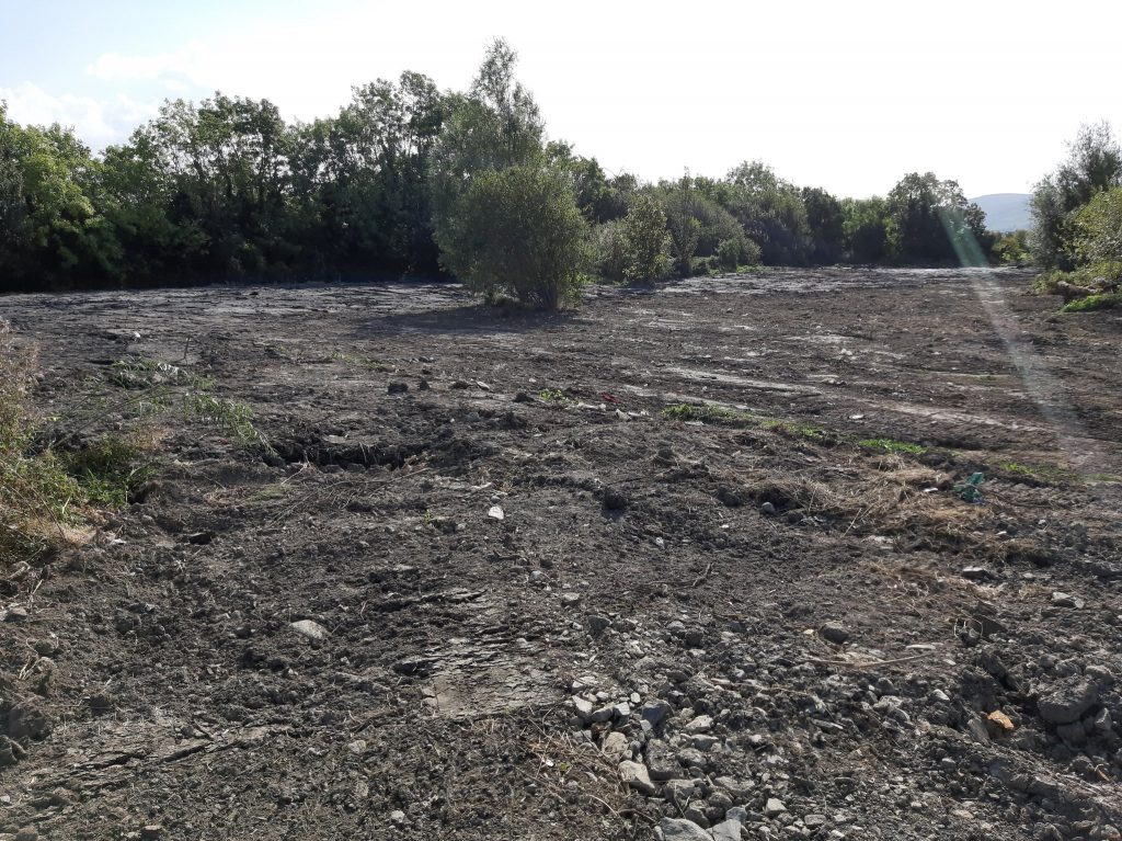 Tallaght wetland after levelling Photo: Collie Ennis